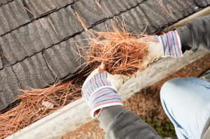 Gutter-Cleaning-columbus