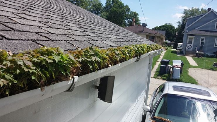 gutter cleaning pros columbus