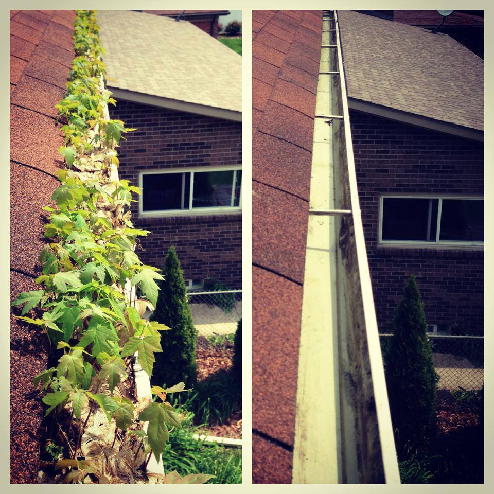 Gutter Cleaning, Columbus, OH